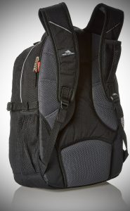 High Sierra Swerve Backpack back