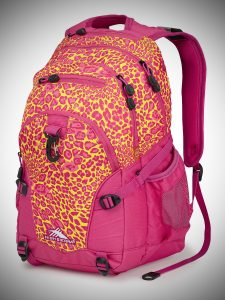 High Sierra Loop Backpack pink