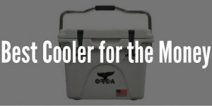Top 5 Best Coolers for the Money - Buying Guide